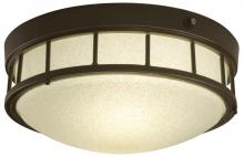 Light Concepts (Lithonia) ODLF10 GBZ - Two Light Bronze Outdoor Flush Mount