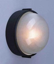 Volume Lighting V6870-5 - 2 - Light Ceiling -Wall Lantern Cast Wet Location