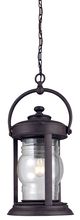 Troy F1418NR - One Light Natural Rust Hanging Lantern